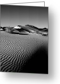 Nv Greeting Cards - Crescentic Sand Dunes Greeting Card by Jeffrey Campbell