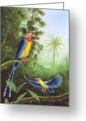 Tail Feather Greeting Cards - Cretaceous Birds, Artwork Greeting Card by Richard Bizley