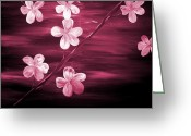 Silver Moonlight Greeting Cards - Crimson Cherry Blossom Greeting Card by Mark Moore