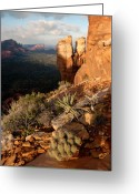 Battlement Greeting Cards - Crimson Cliffs 08-063 Greeting Card by Scott McAllister