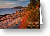 October Greeting Cards - Crimson Cliffs Greeting Card by Susan Cole Kelly