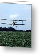 Bi Plane Greeting Cards - Crop Dusting Greeting Card by Photo Researchers