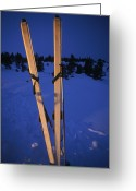 Winter Sports Photo Greeting Cards - Cross-country Skis Standing Upright Greeting Card by Phil Schermeister