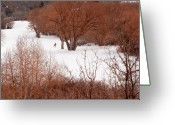 Winter Sports Photo Greeting Cards - Crosscountry Skier Greeting Card by Utah Images