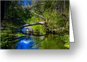 Two Men Greeting Cards - Cruising down the Ichetucknee Greeting Card by David Lee Thompson