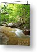 Grafton County Greeting Cards - Crystal Brook - Lincoln New Hampshire USA Greeting Card by Erin Paul Donovan