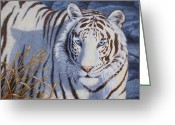 Tiger Tapestries Textiles Greeting Cards - Crystal Eyes Greeting Card by Crista Forest