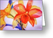 Reproducciones Tropicales Greeting Cards - Crystal Orchids Greeting Card by Estela Robles