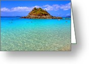 Puerto Rico Greeting Cards - Crystal Waters Greeting Card by Scott Mahon