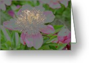 Side At Home Greeting Cards - Crystalline Flower Greeting Card by Don Wright