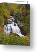 Smoky Mountains Greeting Cards - Cullasaja Falls - WNC Waterfall in Autumn Greeting Card by Dave Allen