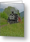 Elizabeth Rose Greeting Cards - Cumbres and Toltec Steam Engine from Chama New Mexico Greeting Card by Elizabeth Rose