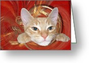 Zsuzsa Balla Greeting Cards - Curios Greeting Card by Zsuzsa Balla