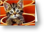 Kittens Digital Art Greeting Cards - Curious Kitten Greeting Card by Pamela Johnson