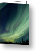 Alaska Greeting Cards - Curtain Whispers Greeting Card by Ed Boudreau