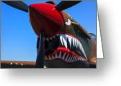 Curtiss Kittyhawk P-40 Greeting Cards - Curtiss P-40N-5 Kittyhawk Greeting Card by Garry Gay