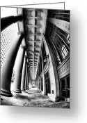 Chicago Artist Greeting Cards - Curves at Union Station Greeting Card by John Rizzuto