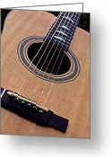 Autistic Greeting Cards - Custom Made Guitar Greeting Card by Garry Gay