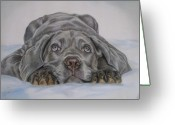 Dogs Pastels Greeting Cards - Cute Greeting Card by Irisha Golovnina