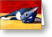 Spoiled Greeting Cards - Cute sleepy Boston Terrier dog painting print Greeting Card by Svetlana Novikova