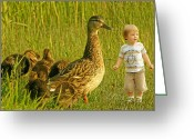 Gnome Greeting Cards - Cute tiny boy playing with ducks Greeting Card by Jaroslaw Grudzinski