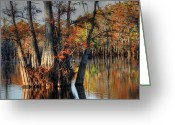 Autumn Photographs Greeting Cards - Cypress Group  Greeting Card by Ester  Rogers