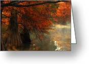 Red Autumn Trees Greeting Cards - Cypress Trees in Red Greeting Card by Iris Greenwell