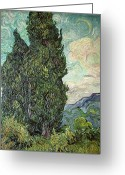 1889 Greeting Cards - Cypresses Greeting Card by Vincent Van Gogh