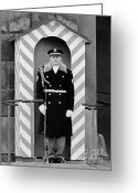 Watch Greeting Cards - Czech soldier on guard at Prague Castle Greeting Card by Christine Till