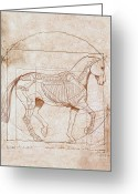 Award Winning Digital Art Greeting Cards - da Vinci Horse in Piaffe Greeting Card by Catherine Twomey