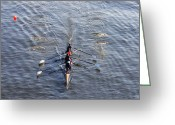 Rowing Crew Greeting Cards - Dad Vail Regatta  Greeting Card by Bill Cannon