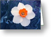 Day Greeting Cards - Daffodill in Blue Greeting Card by Jim  Darnall