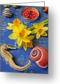 Compass Greeting Cards - Daffodils and Seahorse Greeting Card by Garry Gay