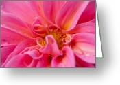 Mountainous Greeting Cards - Dahlia Emily Greeting Card by Alexander Rozinov