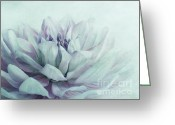 Macros Greeting Cards - Dahlia Greeting Card by Priska Wettstein