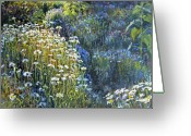 Sunlight Painting Greeting Cards - Daisies and Shades of Blue Greeting Card by Steve Spencer