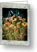 Illustrative Greeting Cards - Daisies Galore Greeting Card by Linda Olsen