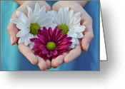 One Person Photo Greeting Cards - Daisies In Child Hands Greeting Card by Natalia Ganelin