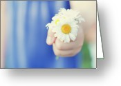 Human Hand Greeting Cards - Daisies Greeting Card by Michele Quattrin; mQn Photography