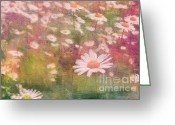 Flower Picture Greeting Cards - Daisy Greeting Card by Angela Doelling AD DESIGN Photo and PhotoArt