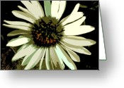Franklin Park Conservatory Digital Art Greeting Cards - Daisy Greeting Card by Mindy Newman