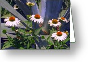 Franklin Park Conservatory Digital Art Greeting Cards - Daisy Party Greeting Card by Mindy Newman