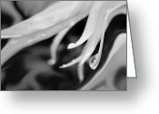 Floral Abstracts Greeting Cards - Daisy Raindrop Floral Monochrome Greeting Card by Jennie Marie Schell