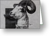 Bighorn Greeting Cards - Dall Ram Greeting Card by Karon Melillo DeVega