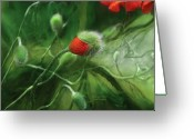 Bud Mixed Media Greeting Cards - Dancing Poppies Greeting Card by Carol Cavalaris