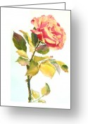  Originals Greeting Cards - Dancing Rose Greeting Card by Maryann Schigur