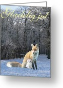 Lesvos Greeting Cards - Danish Winter Fox  Greeting Card by Eric Kempson