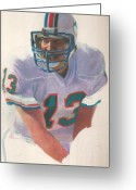 Miami Dolphins Greeting Cards - Danny Greeting Card by Darren  Chilton