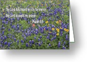 Blue Bonnets Greeting Cards - Dark Blue Blue Bonnets Ps. 6 v 9 Greeting Card by Linda Phelps