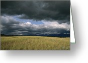 Bison Range Greeting Cards - Dark Clouds Gather Over A Prairie Greeting Card by Annie Griffiths